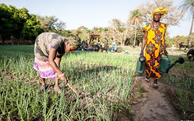 Desenvolvimento rural: Um desafio para todos